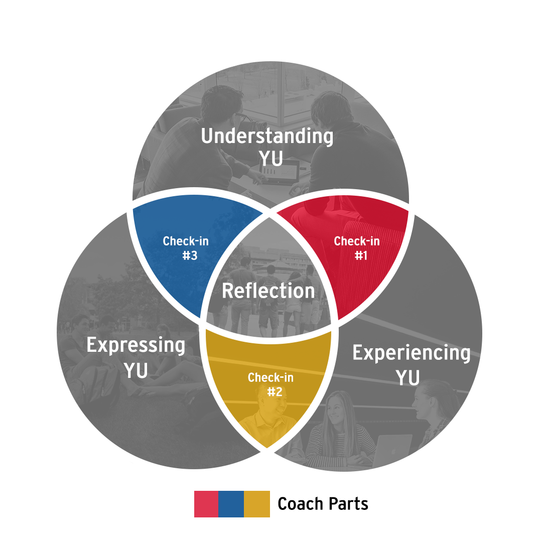 BecomingYU graphic that indicates the understanding yu, experiencing yu, expressing yu and reflection